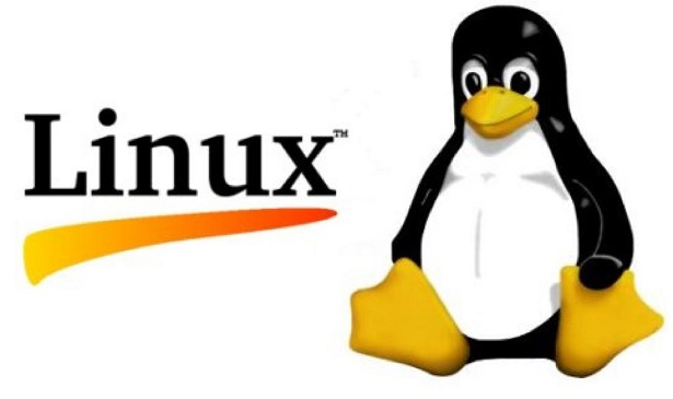 کتاب سیستم عامل لینوکس