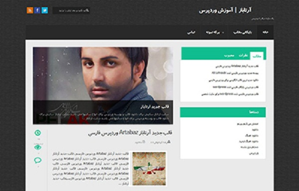 soltare wordpress theme